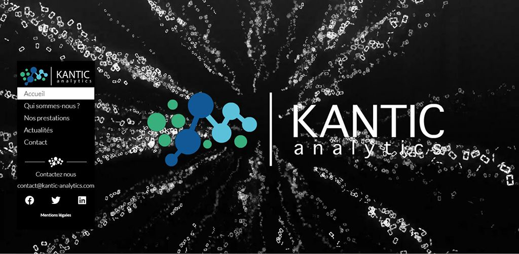 Site web Kantic Analytics