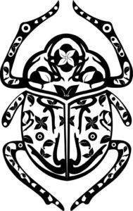 Création Design : Logo Scarabée Shop